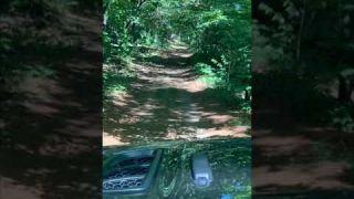 Pelham Trail NH